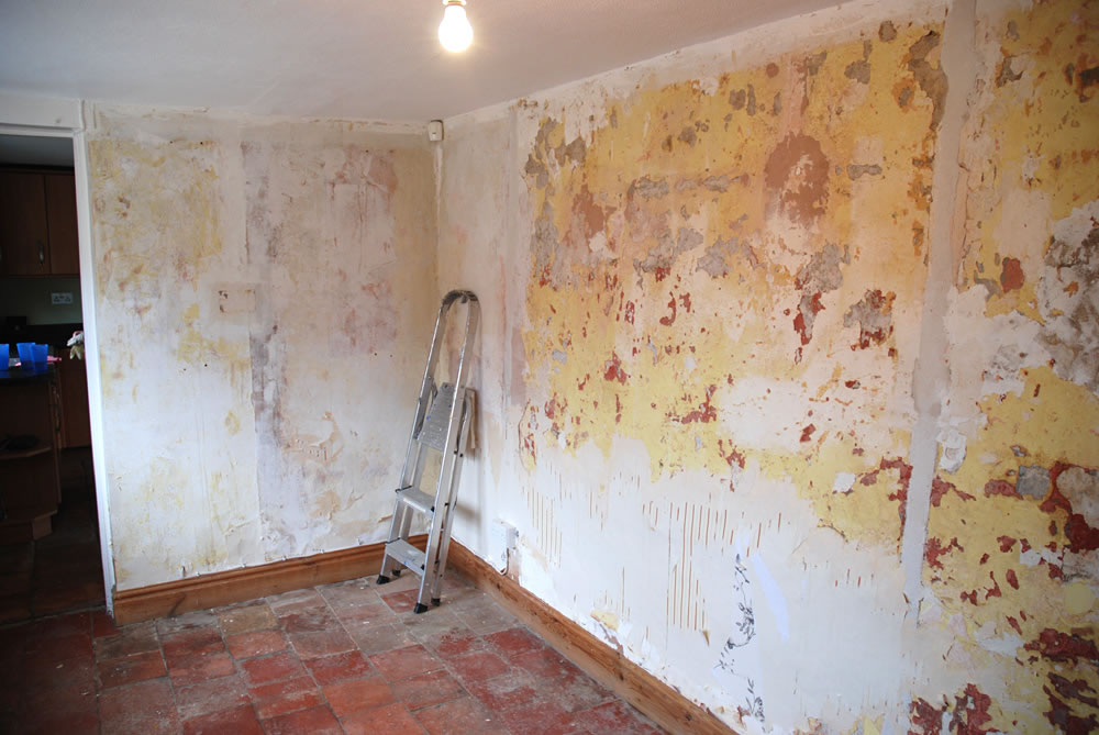 wallpaper removal service san jose morgan hill cambrian