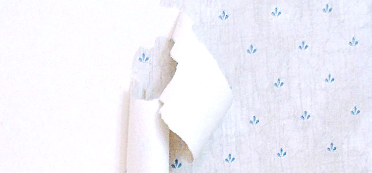 Wall Paper Removal wallpaper removal service san jose, morgan hill, cambrian